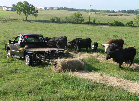 Bale Bed For Sale Iowa